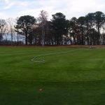 golf green maintenance