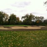 project update on gold green in the fall