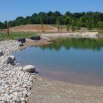 guelph lake water at shore