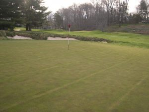 green at Merion at sunset