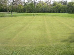 golf green with bench at Merion