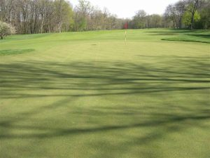 gold hole green with flag at Merion