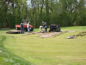 XGD systems implanting new grass
